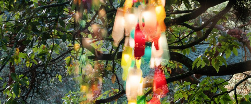 Explore colour and light with the Glucksman gallery